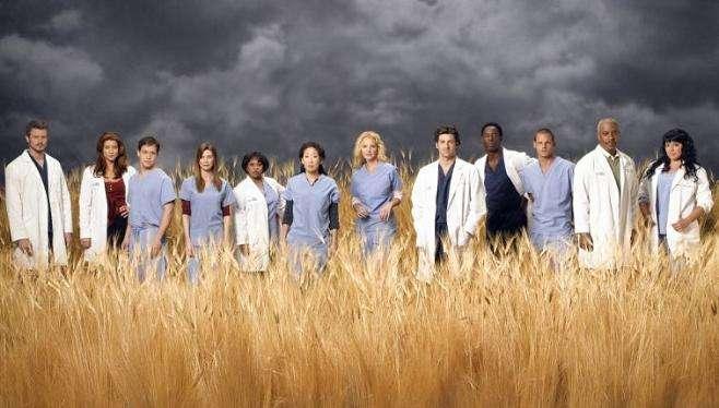Anatomía de Grey temporada 1 2 3 4 5 6
